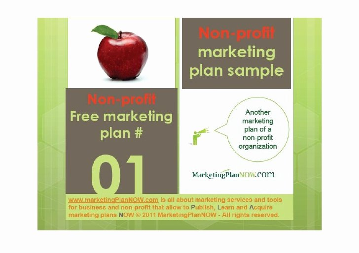 Nonprofit Marketing Plan Template Unique Free Marketing Plan Sample Of A Non Profit African Refugee