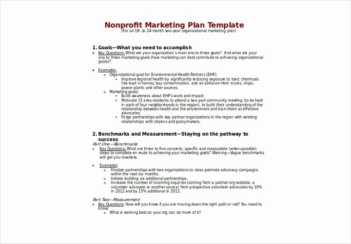 Nonprofit Marketing Plan Template Unique the Essential Guide to Making A Business Plan