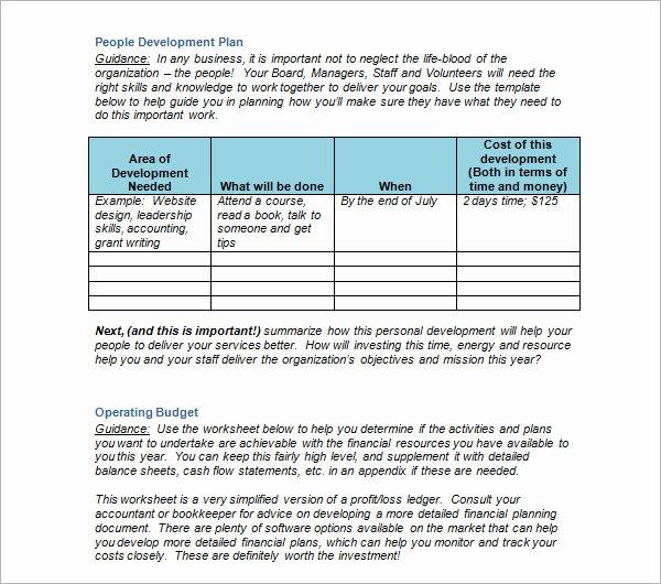 Nonprofit Strategic Plan Template Luxury Strategic Plan Example