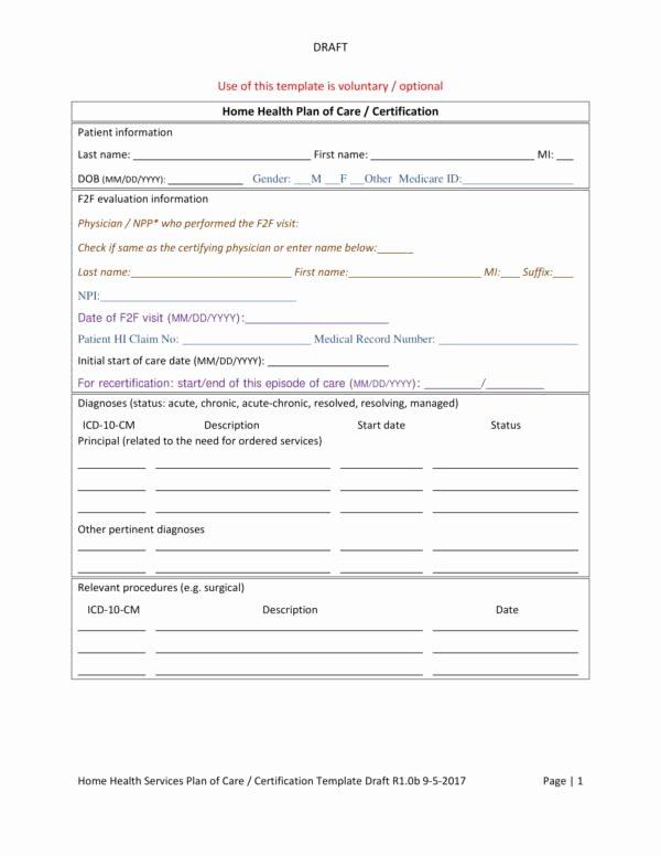 Nursing Care Plan Template Pdf Beautiful 15 Patient Care Plan Template – Pdf Word