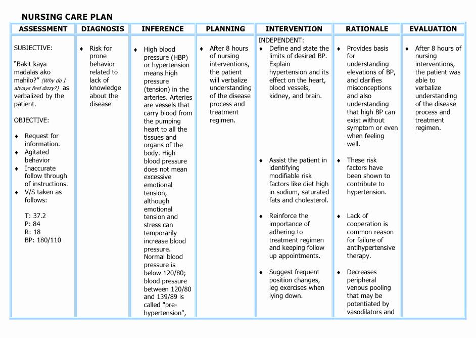 Nursing Care Plan Template Pdf Unique Understanding the Nanda Nursing Diagnosis