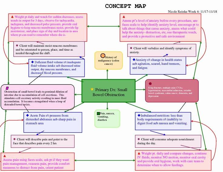 Nursing Concept Map Creator Free Beautiful Small Bowel Obstruction Nursing Pinterest