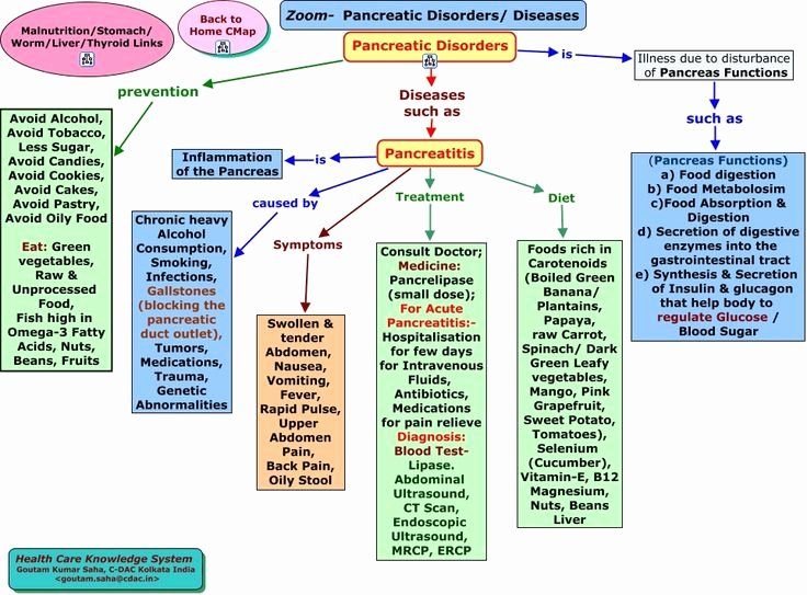 Nursing Concept Map Creator Free Luxury 215 Best Images About Nursing Care Plans & Concept Maps