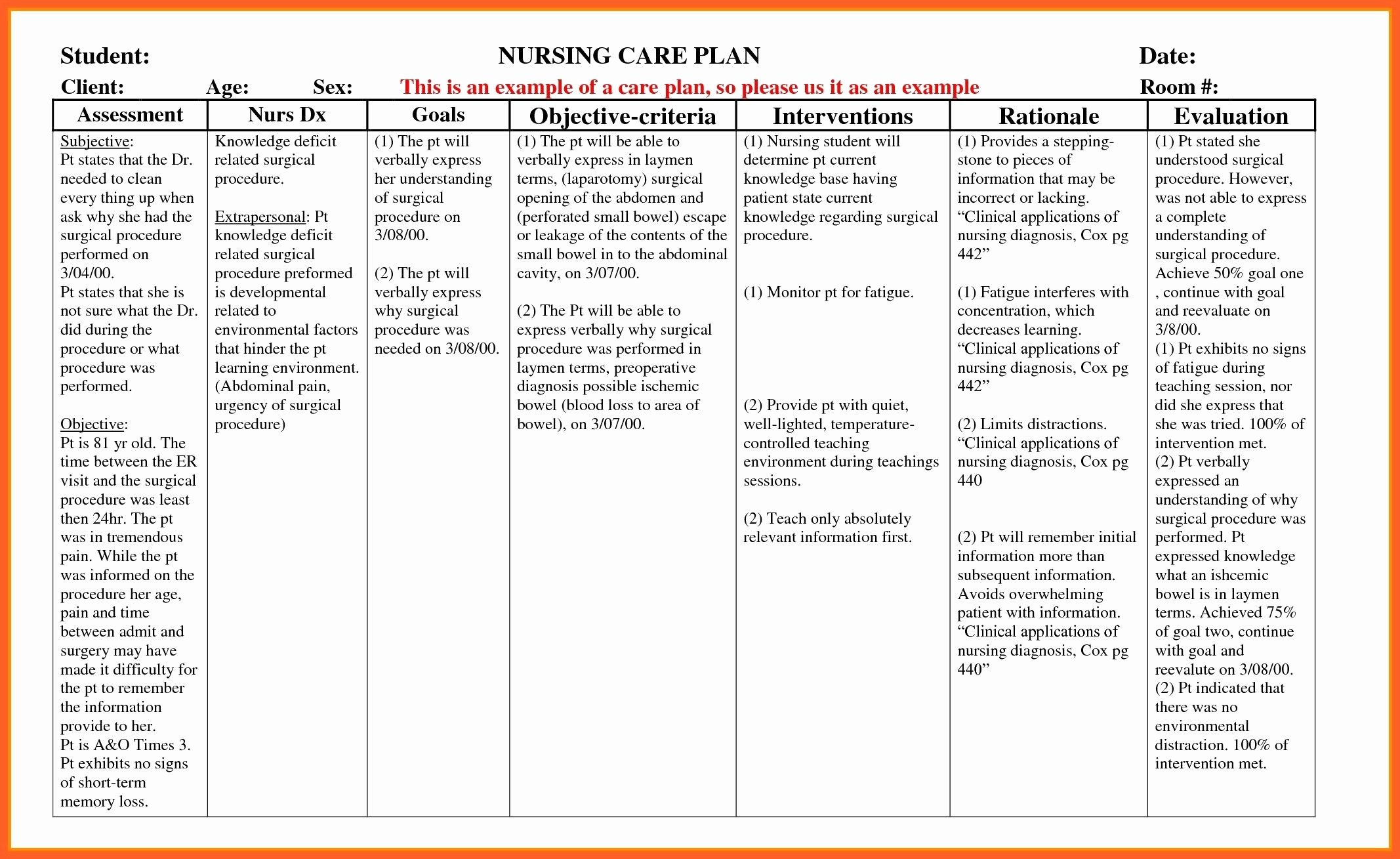 Nursing Education Plan Template Beautiful Example Care Plan Template for Elderly Nursing Home