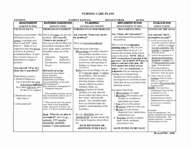 Nursing Education Plan Template New Nursing Notes