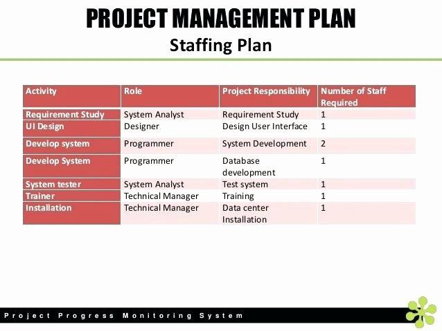 Nursing Staffing Plan Template Inspirational Nursing Staffing Plan Template Inspirational Staff