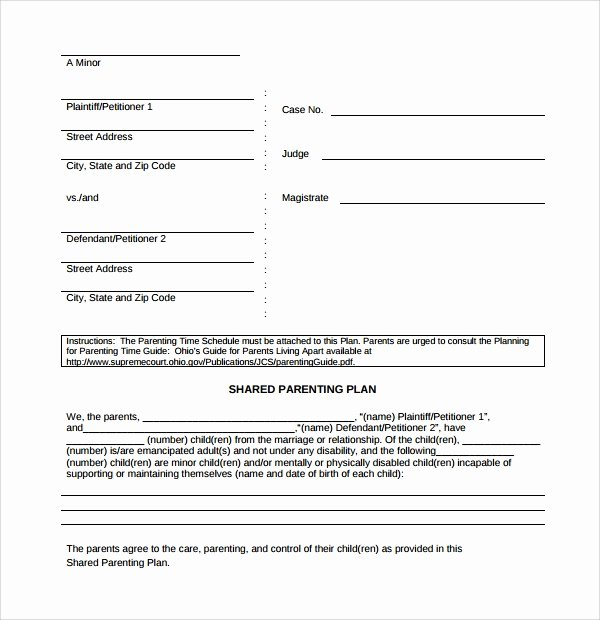 Parenting Plan Template Free Fresh Sample Parenting Plan Template 8 Free Documents In Pdf