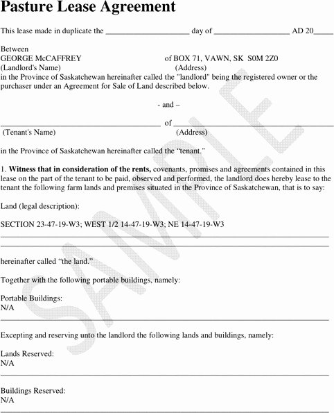 Pasture Lease Agreement Template Awesome Sample Pasture Lease Agreement