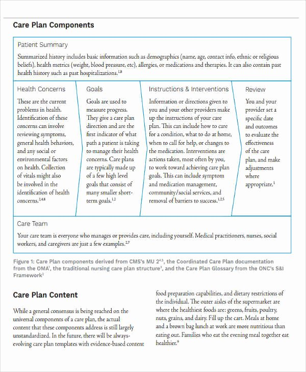 Patient Care Plan Template Best Of 11 Basic Care Plan Template Word Pdf format Download