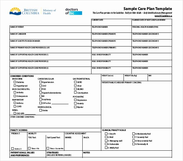 Patient Care Plan Template Lovely 13 Patient Care Plan Templates Pdf Docs
