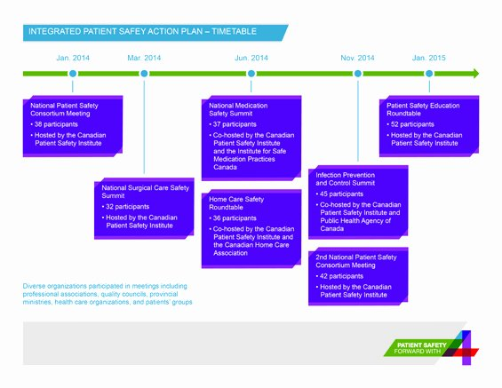 Patient Safety Plan Template Beautiful Integrated Patient Safety Action Plan
