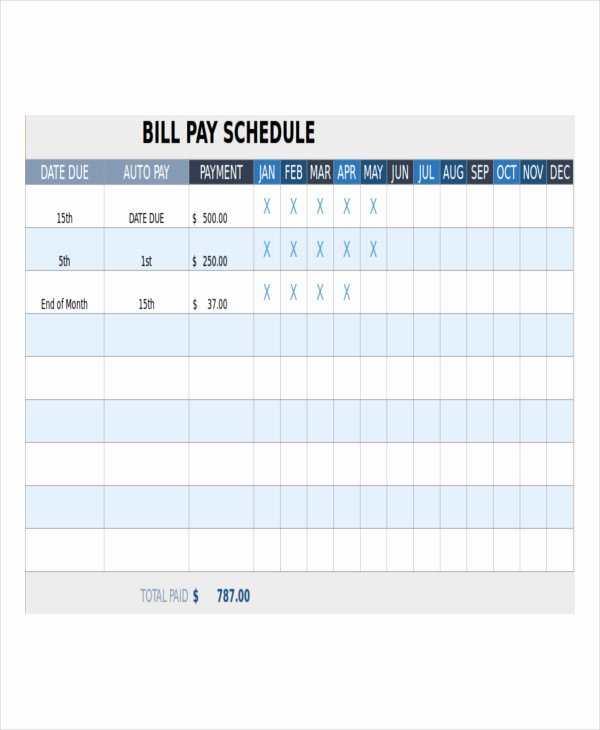 Payment Plan Template Excel Luxury Bill Payment Schedule Template 12 Free Word Pdf format