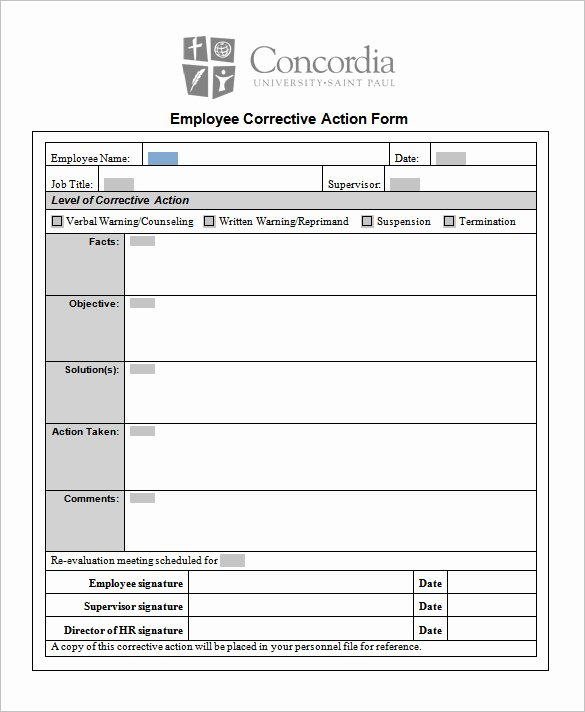 Performance Action Plan Template Best Of 85 Action Plan Templates Word Excel Pdf