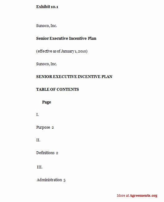 Performance Based Bonus Plan Template Inspirational Senior Executive Incentive Plan Sample Senior Executive