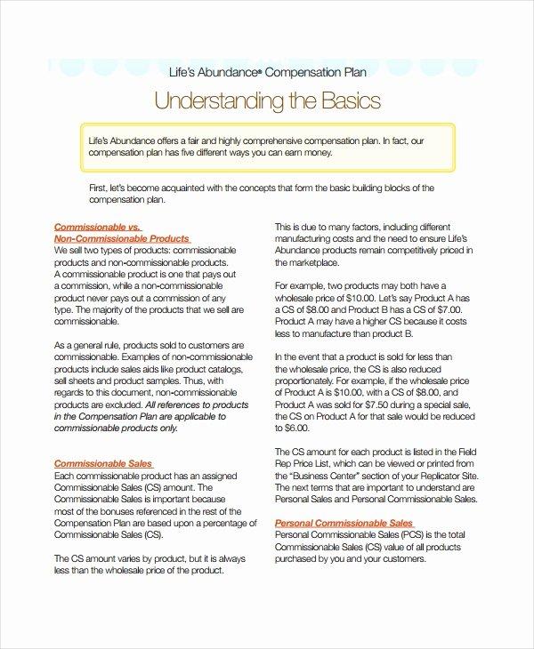 Performance Based Bonus Plan Template Lovely Pensation Plan Template 8 Free Word Document