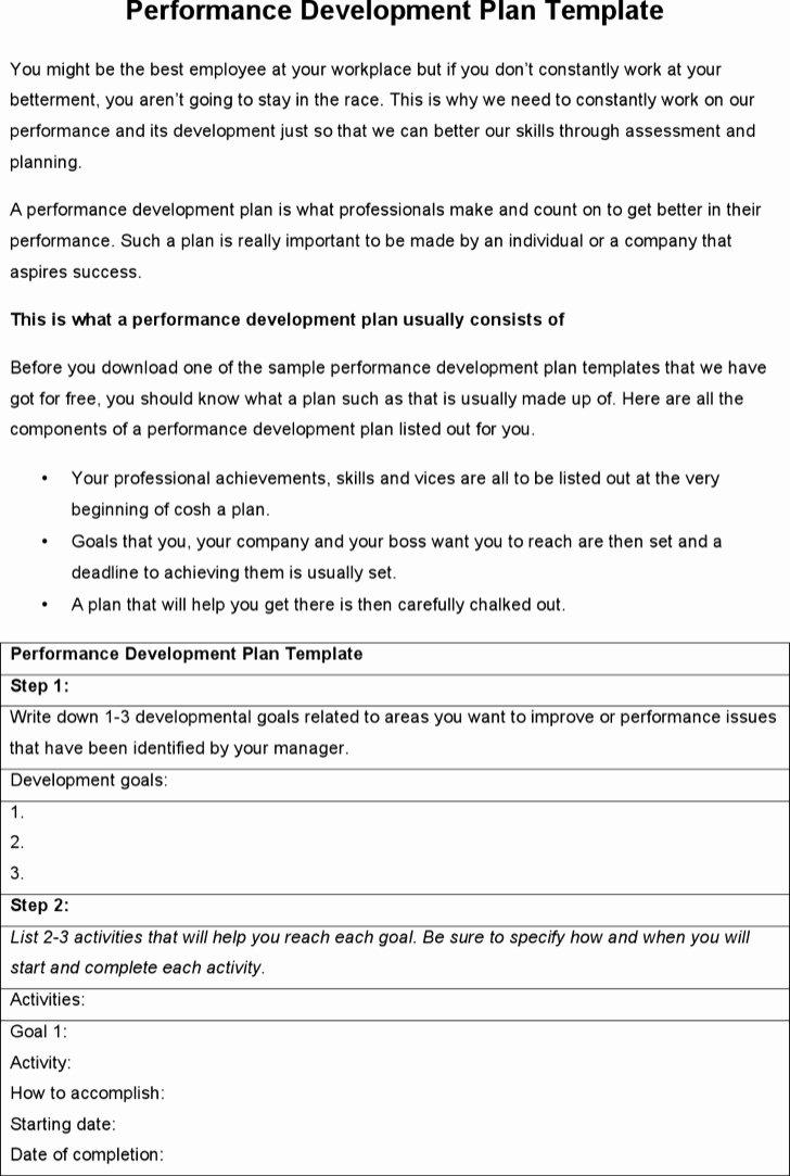 Performance Development Plan Template Best Of 6 Sample Performance Development Plan Templates to