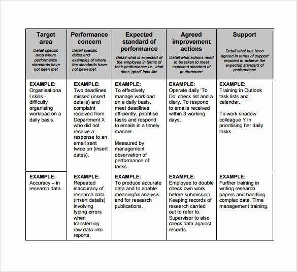Performance Development Plan Template Luxury 7 Performance Plan Samples