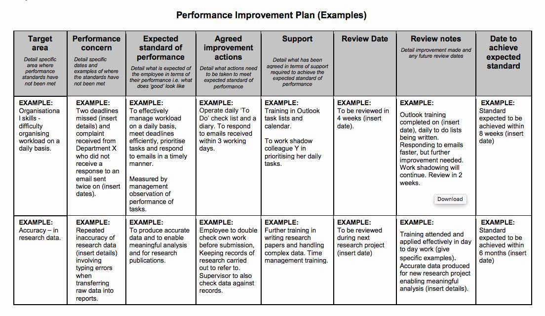Performance Improvement Plan Template Best Of Examples Performance Improvement Plans for Employees