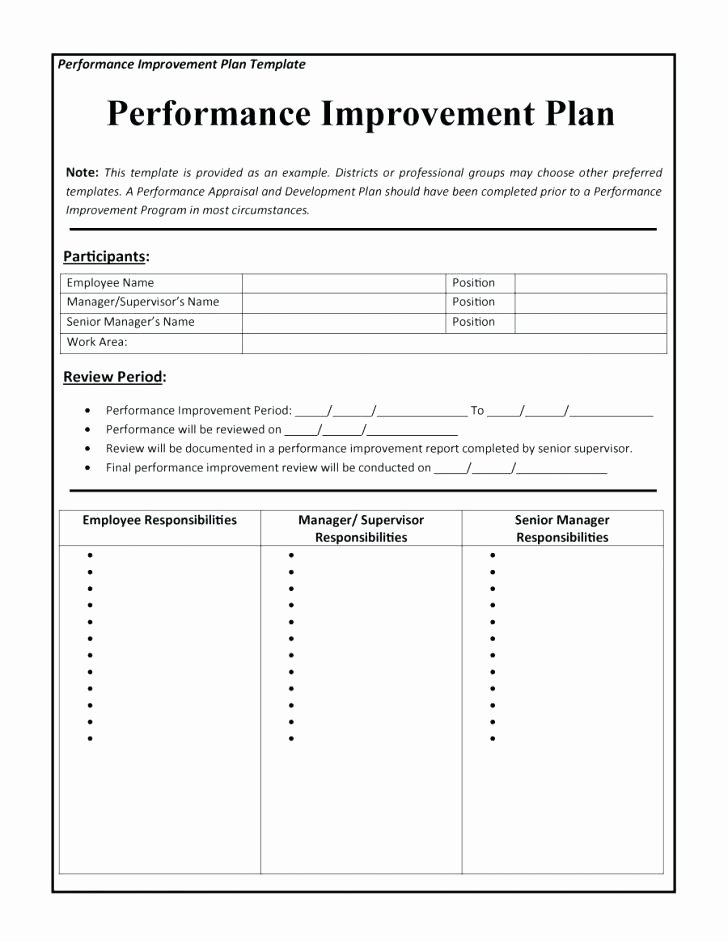 Performance Improvement Plan Template Excel Luxury Performance Improvement Program Template