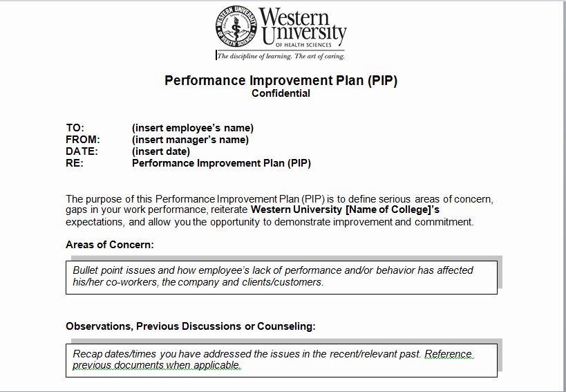 Performance Improvement Plan Template Excel Unique Performance Improvement Plan Sample Template Excel Tmp