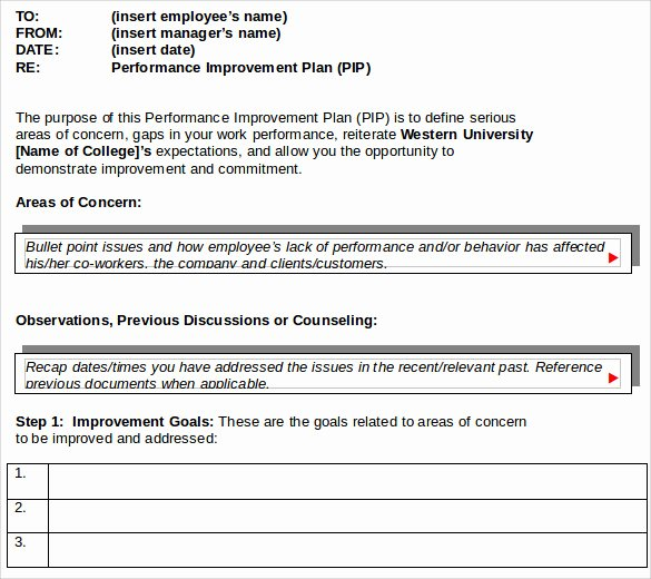 Performance Improvement Plan Template Lovely Sample Improvement Plan Template 13 Free Documents