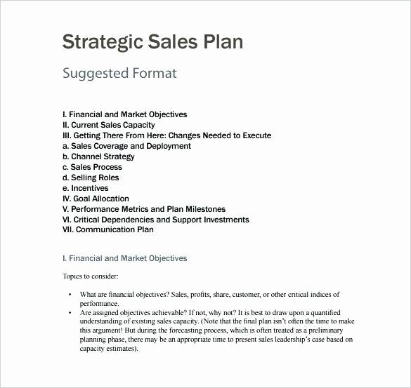 Performance Incentive Plan Template Awesome Free Sales Plan Template