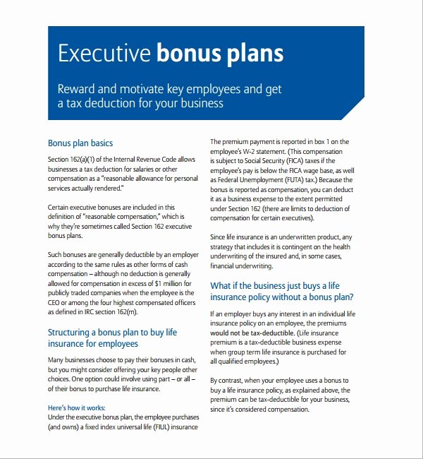 Performance Incentive Plan Template Elegant 7 Bonus Plan Templates