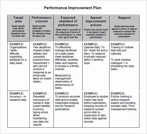 Performance Management Plan Template Fresh Sample Action Plan for Employee