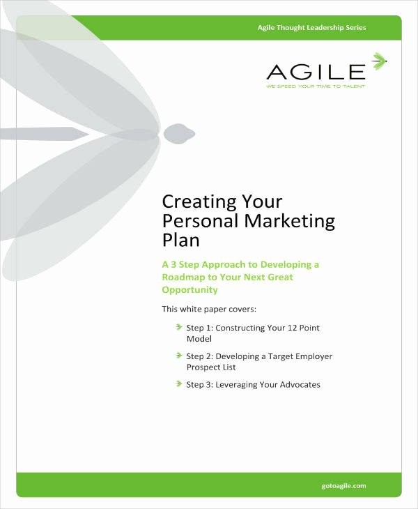 Personal Marketing Plan Template Luxury 8 Personal Marketing Plan Templates Pdf