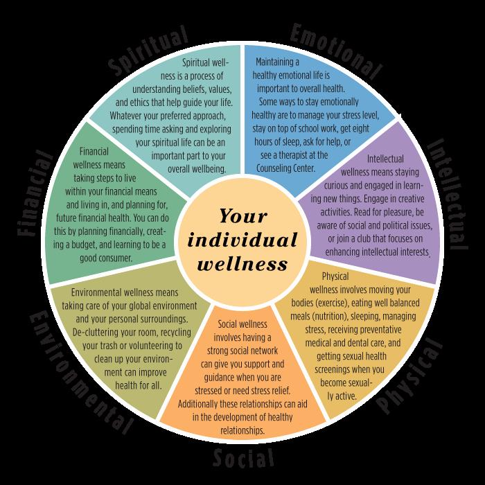 Personal Wellness Plan Template Beautiful Wellness Wheel