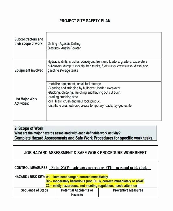 Personal Wellness Plan Template New forms Emergency Management Action Plan Sheet Template