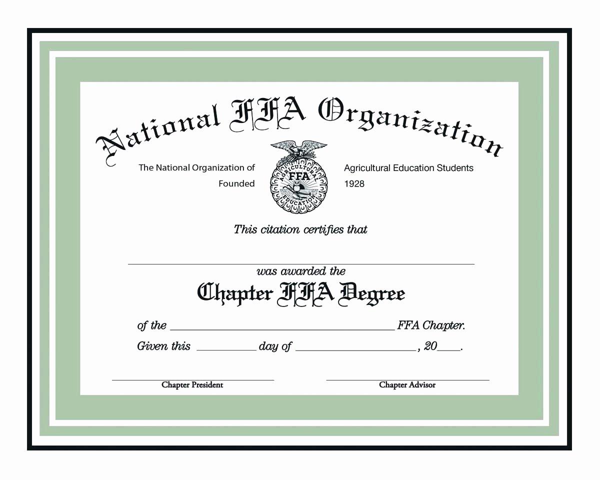 Phantom Stock Agreement Template Fresh Stock Option Certificate Template Modern Certificate