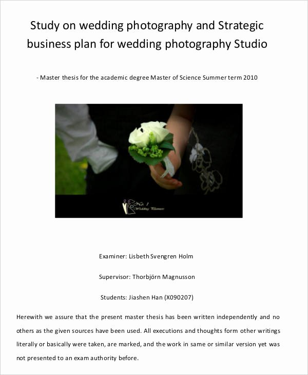 Photography Business Plan Template Elegant 29 Free Business Plan Templates