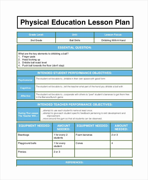 Phys Ed Lesson Plan Template New 62 Examples Of Lesson Plans Word Pdf