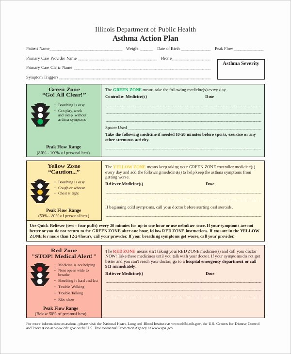 Plan Of Action Template Elegant 13 Action Plan Examples
