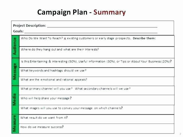 Political Campaign Plan Template Awesome Fundraising Plan Template Excel Marketing Sample