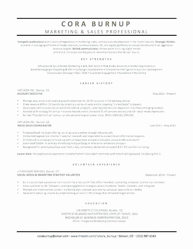 Political Campaign Plan Template Awesome John Smith for Political Campaign Plan Outline Template