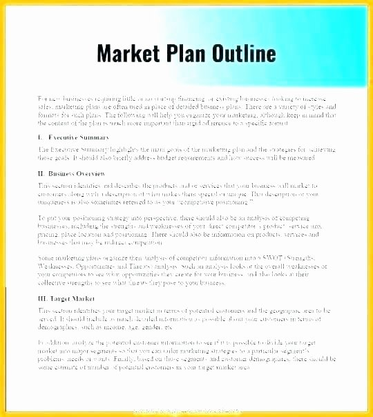 Political Campaign Plan Template Awesome Recruitment Campaign Plan Template Business Development