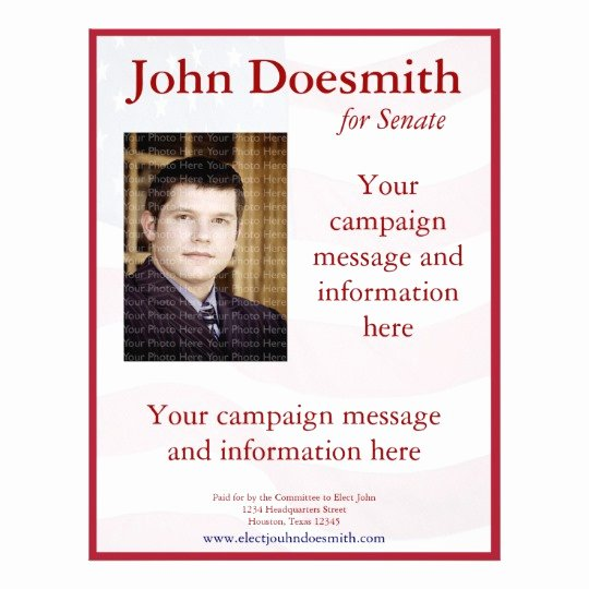 Political Campaign Plan Template Beautiful Political Campaign Flyer Template