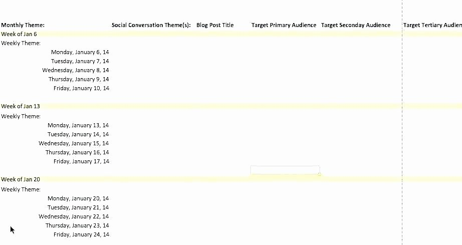Political Campaign Plan Template New Fundraising Political Campaign Strategy Template