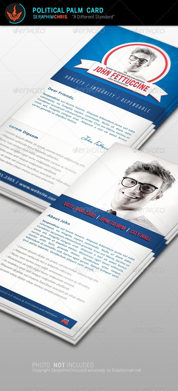 Political Campaign Plan Template Pdf Inspirational 39 Best Political Branding Images On Pinterest