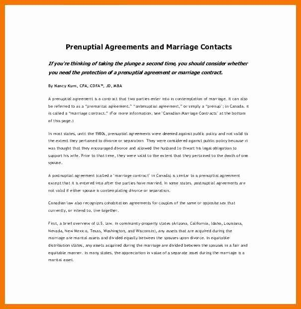 Postnuptial Agreement Florida Sample Unique Sample Prenuptial Agreements