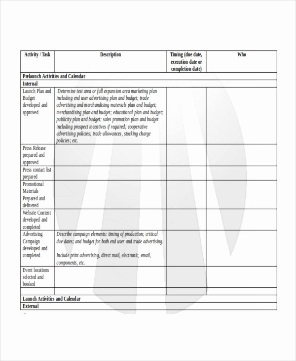 Product Launch Plan Template Elegant Product Launch Plan Template 10 Free Word Pdf Document