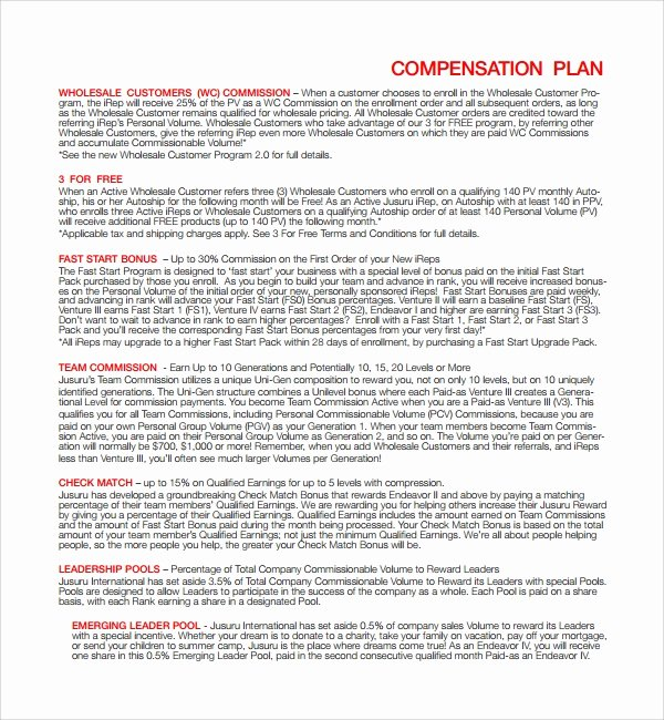 Professional Compensation Plan Template Beautiful 9 Pensation Plan Templates