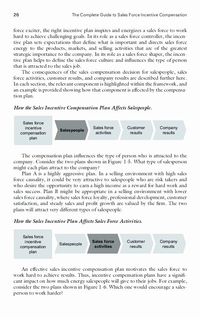Professional Compensation Plan Template Fresh Incentive Pensation Plan Template Sales Examples Bonus