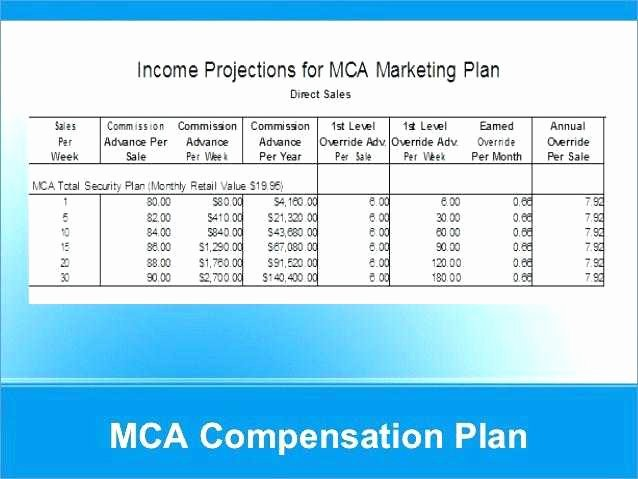 Professional Compensation Plan Template Lovely 17 Lovely Pensation Proposal Template Collections