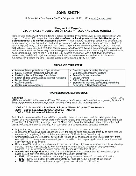 Professional Compensation Plan Template Lovely Professional Employee Pensation Plan Template Senior