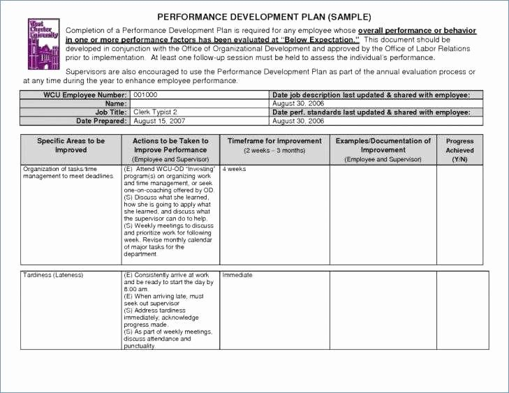 Programme Implementation Plan Template Best Of Project Implementation Plan Template Excel Readleaf Document