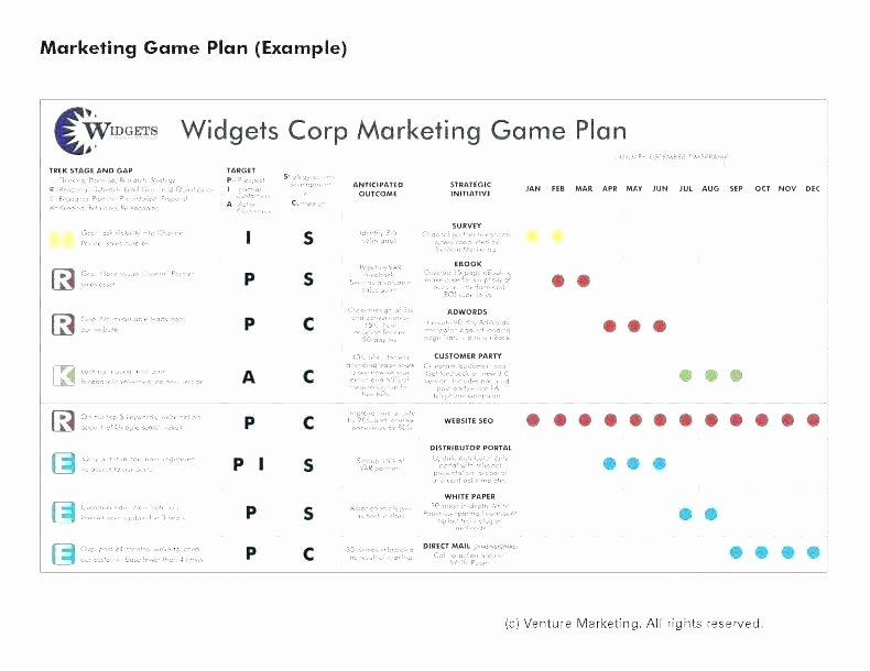 Project Execution Plan Template New Project Execution Template