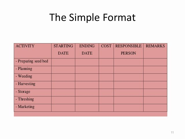 Project Implementation Plan Template Elegant Project Implementation